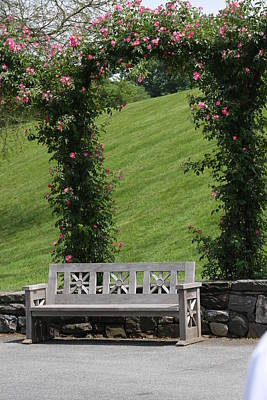 Rose Arch At Longwood Gardens Print by Vadim Levin