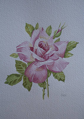 Mums Painting - Rose by Carol De Bruyn