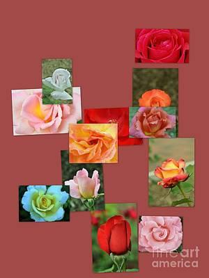 Rose Collage 2 Original by Allen Beatty