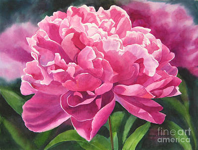 Peonies Painting - Rose Colored Peony Blossom by Sharon Freeman