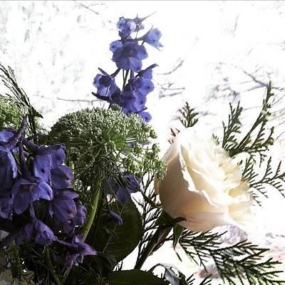 Roses Photograph - #rose #flowers by Jennifer Beaudet