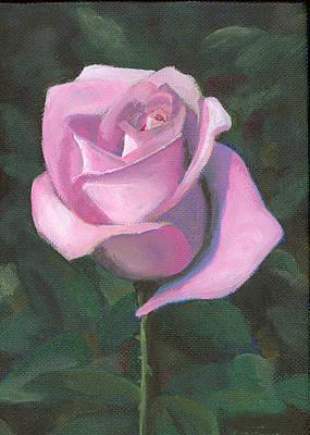 Rose Print by Joe Maracic