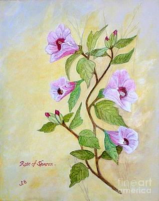 Rose Of Sharon Painting - Rose Of Sharon by John Burch