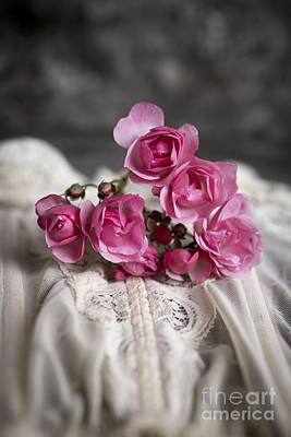 Love Laces Photograph - Roses And Lace by Edward Fielding