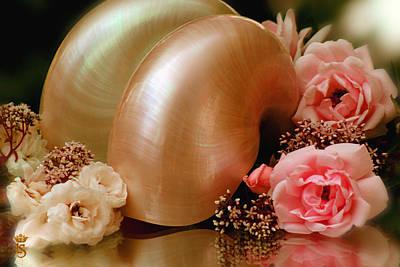 Roses With Sea Shell Original by Li   van Saathoff