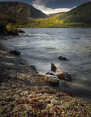 Images Photograph - Rowardennan by Alex Saunders