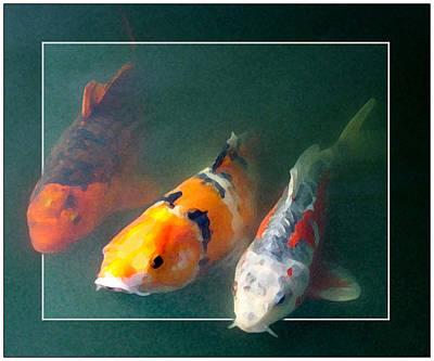 Goldfish Digital Art - Roy Troy And Joy Koi  Or Dimensional Fish   by Donna Haggerty