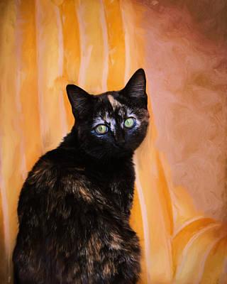 Kitten Photograph - Royal Kitten by Jai Johnson