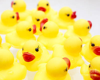 Rubber Ducky You Are The One Print by Edward Fielding