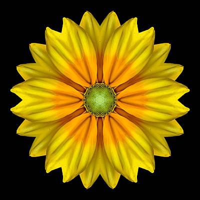 Rudbeckia Prairie Sun I Flower Mandala Print by David J Bookbinder