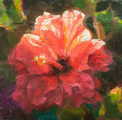 Red Painting - Ruffled Light Double Hibiscus Flower by Karen Whitworth