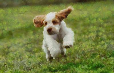 Cocker Spaniel Painting - Running Puppy Cocker Spaniel by Dan Sproul