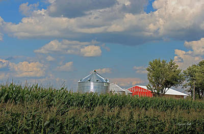 Rural Indiana Scene - Adams County Print by Suzanne Gaff