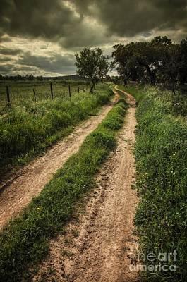Rural Trail Print by Carlos Caetano