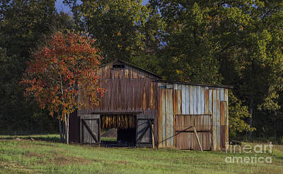 Murray Kentucky Photograph - Rust Is Beautiful by Amber Kresge