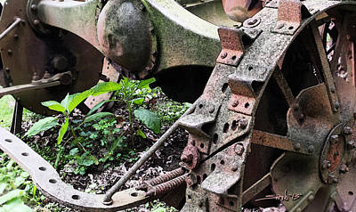 Michael Spano Photograph - Rusted Axle Planter by Michael Spano