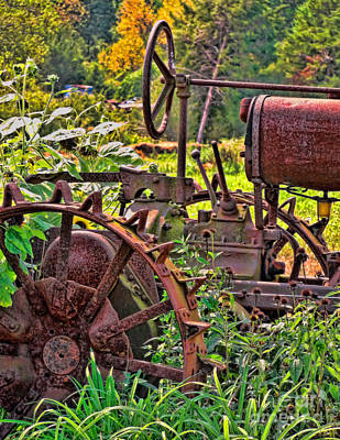 Vivid Fall Colors Photograph - Rusted by Colleen Kammerer