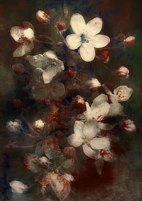 Rustic Digital Art Digital Art - Rustic Apple Blossoms by Bernie  Lee