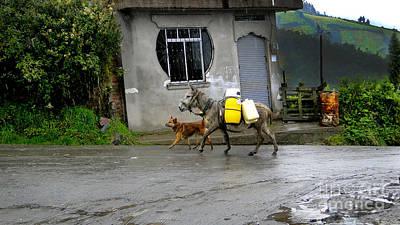 Herding Dog Photograph - Rustic Automation On El Altar by Al Bourassa