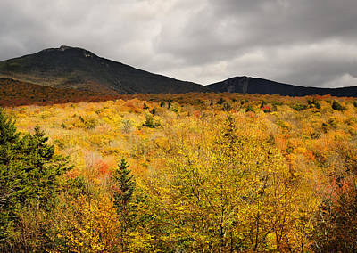 Rustic Autumn At Franconia Notch Print by Luke Moore