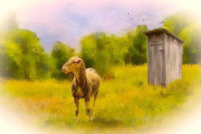 Pasture Scenes Mixed Media - Rustic Pasture by Mary Timman