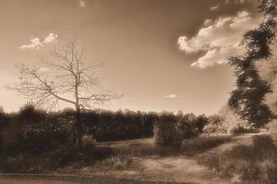 Scenic Photograph - Rustic by Thomas  MacPherson Jr
