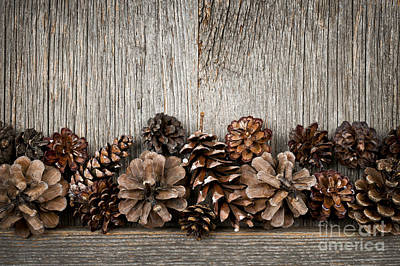 Rustic Wood With Pine Cones Print by Elena Elisseeva