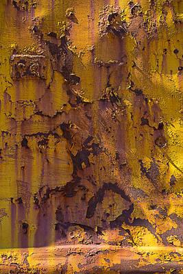 Rusting Yellow Metal Print by Garry Gay