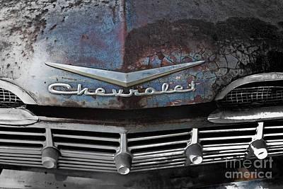 Rusty Impala Print by Deborah Montana