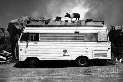 Rv Trailer Park 5d22705 Black And White V2 Print by Wingsdomain Art and Photography