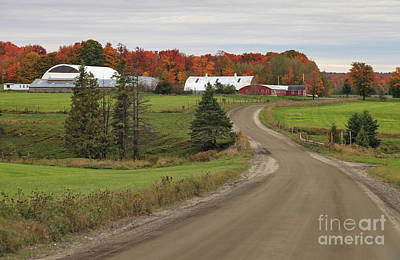 Green Photograph - S Curve Farm by Charles Kozierok