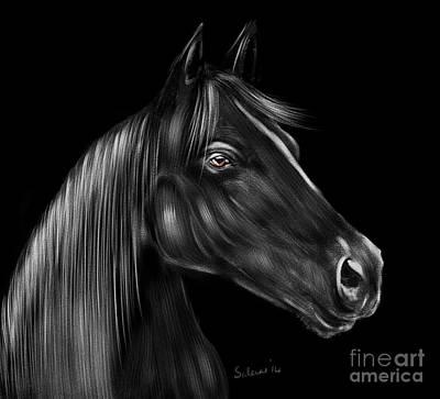 Stallion Digital Art - Sable by Saleires Art