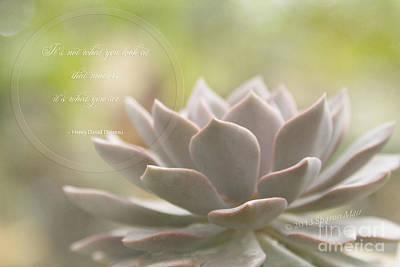 Sacred Garden Print by Sharon Mau