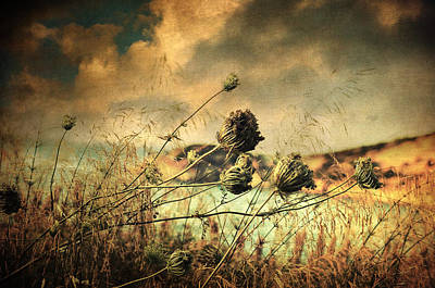 Impressionist Photograph - Sad Song Of The Wind by Taylan Soyturk