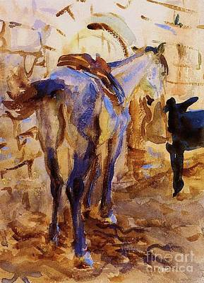 Donkey Watercolor Painting - Saddle Horse - Palestine by Pg Reproductions