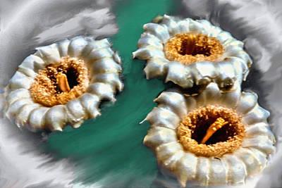 Saguaro Cactus Blossoms Print by Bob and Nadine Johnston