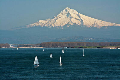 Sailboats, Columbia River, Mount Hood Print by Michel Hersen