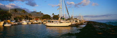 Sailboats In The Bay, Lahaina Harbor Print by Panoramic Images