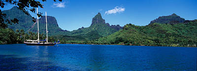 Moorea Photograph - Sailboats Sailing In The Ocean, Opunohu by Panoramic Images