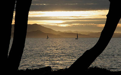 Sailing At Sunset On The Bay Print by Robert Woodward