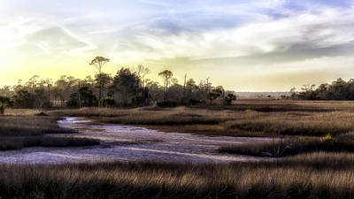 Saint Marks Wetland Sunset Print by Lynn Palmer