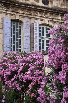 Provence Photograph - Saint Remy Windows by Brian Jannsen