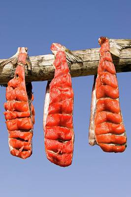 Food Stores Photograph - Salmon Hanging To Dry by Ashley Cooper