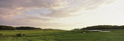 Cape Cod Photograph - Salt Pond In A Forest, Cape Cod by Panoramic Images