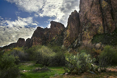 Sonora Photograph - Salt River Greenery And Rocks by Dave Dilli