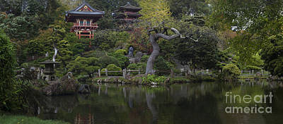 Golden Gate Park Photograph - San Francisco Japanese Garden by Mike Reid