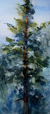Forestry Painting - San Jacinto Mountain Tree Top by Sandra Strohschein