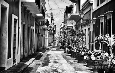 San Juan Street Plants Print by John Rizzuto
