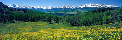 Mountain Photograph - San Miguel Mountains In Spring by Panoramic Images