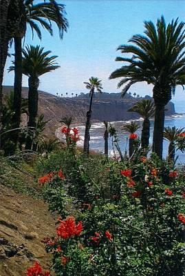 Photograph - San Pedro Coast Line by Robert Bray